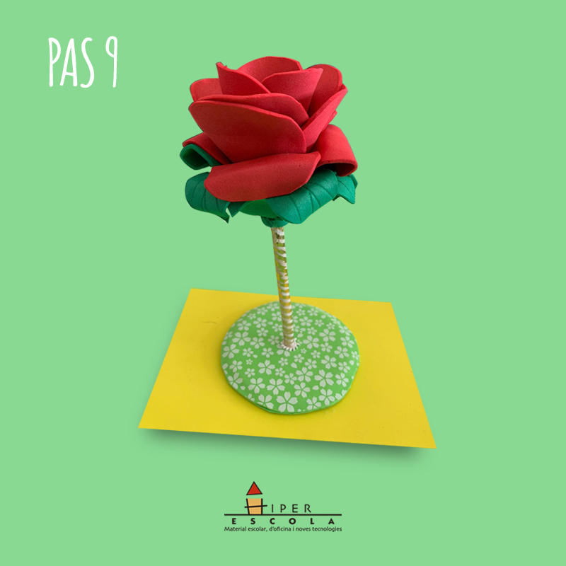 Pas 9 - Rosa Goma Eva Sant Jordi